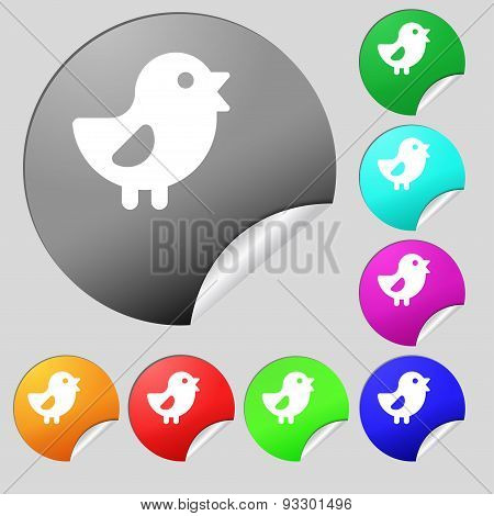 Chicken, Bird Icon Sign. Set Of Eight Multi Colored Round Buttons, Stickers. Vector