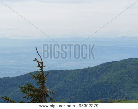 Overlooking The Vosges With The Alps In The Distance