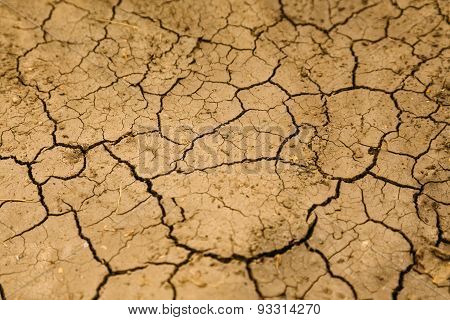 Abstract Background, Cracked Dirt Surface