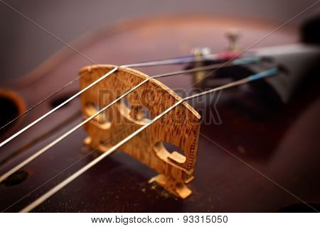 Violin Strings And Violin Body