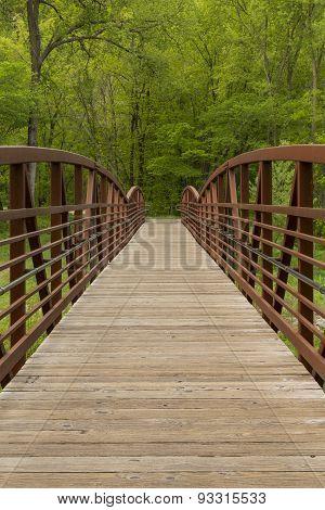 Park Footbridge In Spring