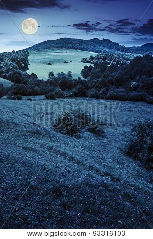 Agricultural Field On Hillside Meadow At Night