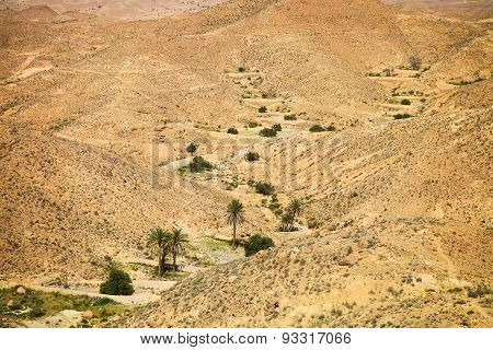 View Of Mountain Oasis Chebika, Sahara Desert, Tunisia