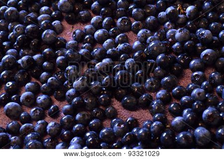 Wet Blueberries Spread Out On Towel