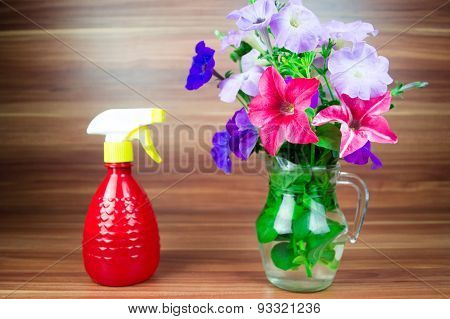 Colorful petunia blooms in a glass pitcher with spray bottle