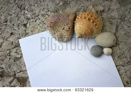 Seashells and pebbles with note paper