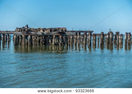 Decayed Pier Pilings