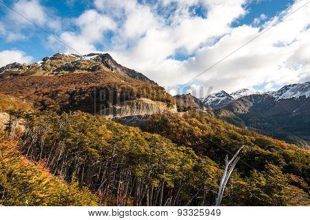 Autumn In Patagonia. Cordillera Darwin, Tierra Del Fuego, Chile