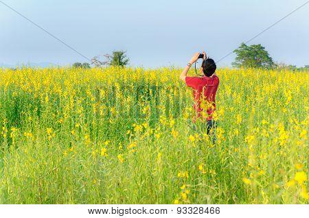 Chiang Rai, Thailand-november 25 : Unidentified Traveller Take A Photo In Sunn Hemp Field On Novembe