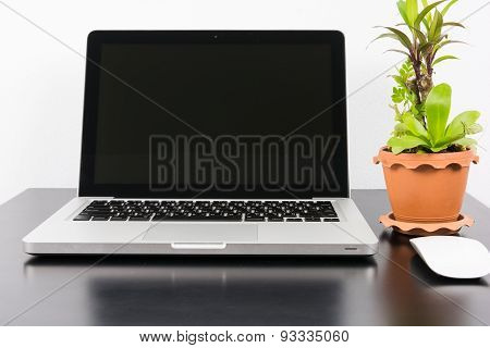 Laptop And Flower Pot On Black Wooden Table