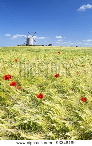 Vertical View Of Windmill And Wheat Field