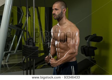 Triceps Exercise