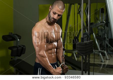 Bodybuilder Exercising Triceps