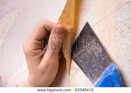 Hands Removing Old Wallpaper With Spatula