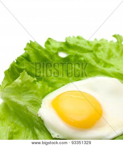 Fried Eggs And Lettuce Copy Space