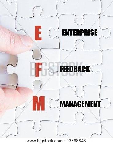 Last Puzzle Piece With Business Acronym Efm