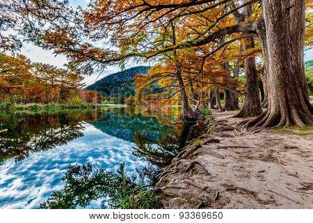 Fall Foliage Surrounding the Frio River, Texas