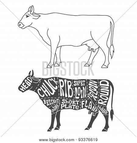 Beef cuts diagram