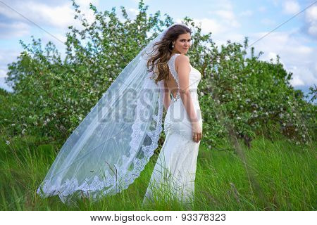 Young Beautiful Bride With Long Flying Veil In Blooming Garden