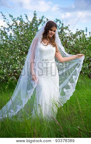 Young Beautiful Bride With Long Veil Walking In Blooming Garden