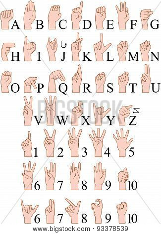 Sign Language A To Z Numbers Hands Pack