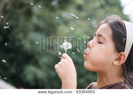 Melissa Blows Dandelion