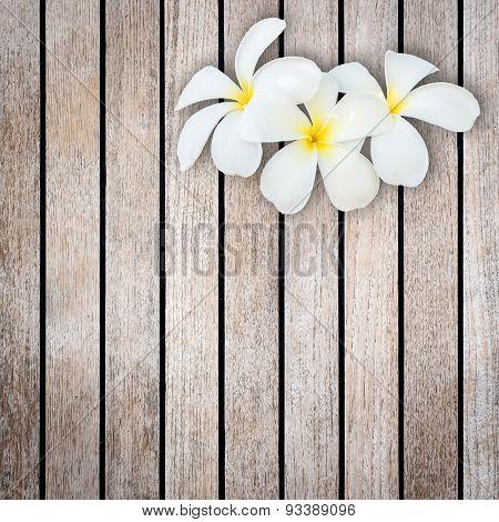 White And Yellow Frangipani Flower On Wood Background