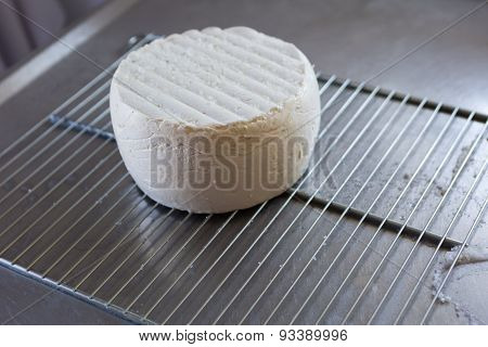 French Goat Cheese Maturing In Basement