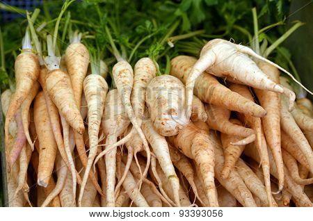 Root Parsley On Display In Food Market