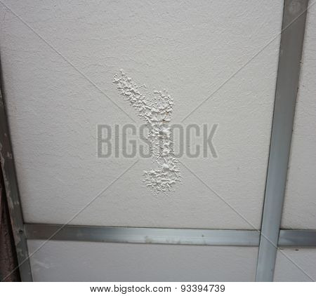 Small Mark On Ceilings From Water Erosion.