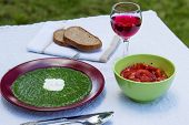 picture of marsala  - spinach in marsala color plate with tomatoes brown bread and wine - JPG