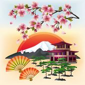 picture of bonsai  - Japanese background with sakura blossom  - JPG