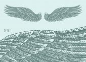 picture of hells angels  - Angel wings illustration engraved style hand drawn sketch - JPG