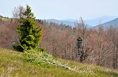 pic of grassland  - Wooden hunting tower on grassland in forest in spring season Beskids mountains Poland - JPG