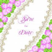 pic of geranium  - Vintage wedding invitation with geraniums and lace border - JPG