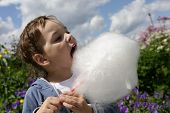 stock photo of candy cotton  - Child eating cotton candy in the park - JPG