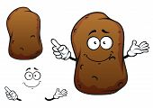 foto of potato chips  - Funny cartoon potato vegetable character with brown rough skin isolated on white background - JPG