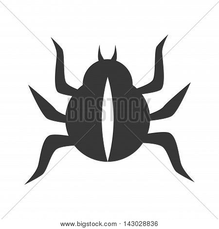 bug scarab beetle insect animal  vector illustration isolated