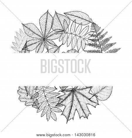 Circle from leaves with space for text. Hand drawing. Vector illustration