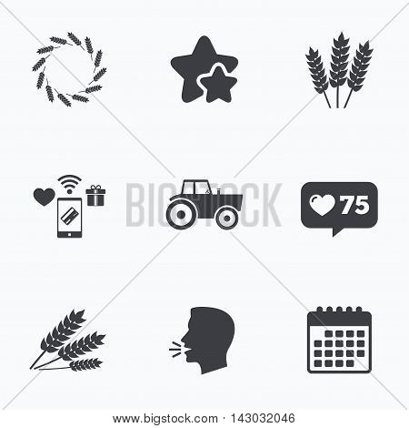 Agricultural icons. Wheat corn or Gluten free signs symbols. Tractor machinery. Flat talking head, calendar icons. Stars, like counter icons. Vector