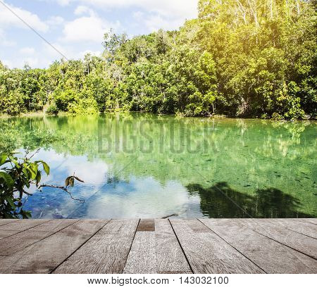Wood floor top on river with green tree in nature