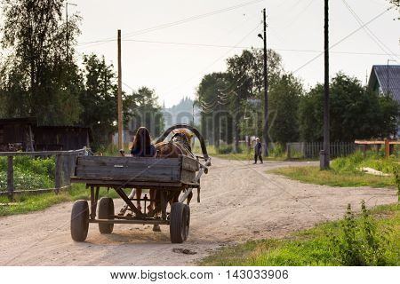 Little girl driving horse-drawn carriage in village