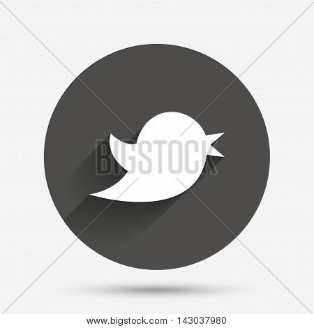 Bird icon. Social media sign. Messages symbol. Circle flat button with shadow. Vector