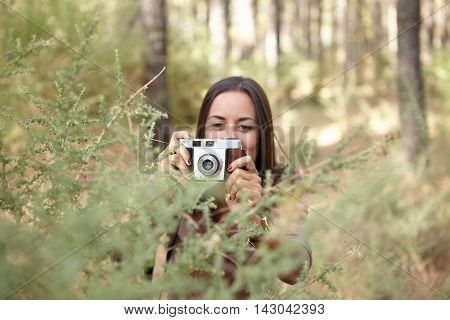 A young brunette taking a picture of a young sapling in a pine forest in the dappled late afternoon sunshine