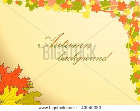 Autumn Background With Colored Maple Leaves Decorates The Top Right Corner