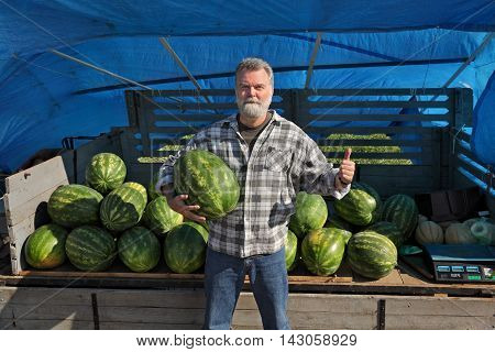 Farmer selling watermelons and holding one to show quality gesturing with thumb up