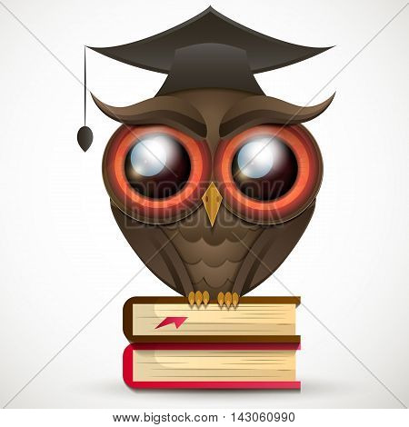 Owl school a wise teacher knowledge book