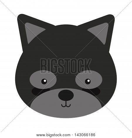 woodland raccoon animal character cute icon vector illustration design vector illustration design
