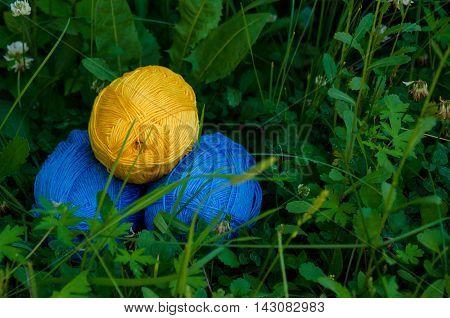Three Cotton Yarn Skeins Lying On The Green Grass