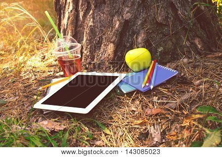 Under a big tree lying tablet with blank screen notebooks colored pencils apple and juice at park in summer sunset light